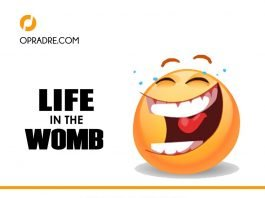 Life in The Womb by Mummy E   A Short Pidgin English Comedy