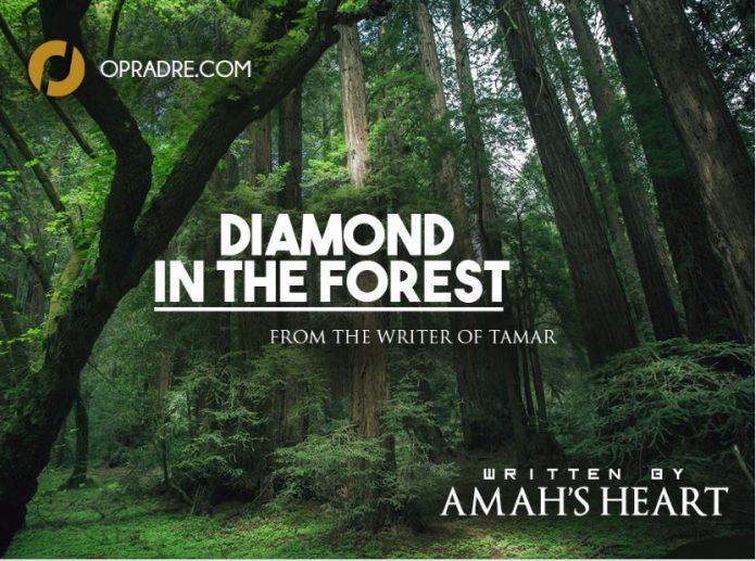 DIAMOND IN THE FOREST Episode 3 by Amah's Heart
