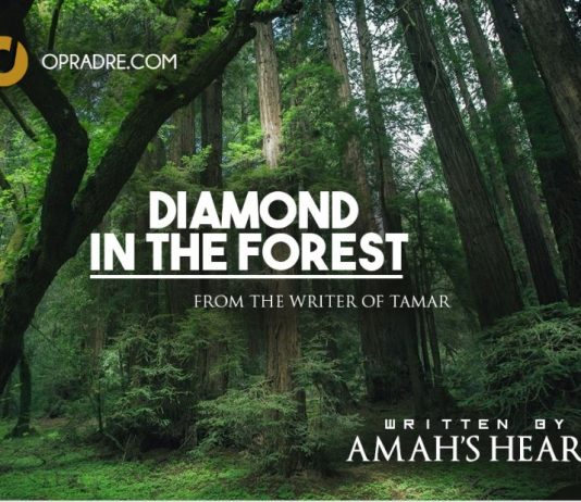 DIAMOND IN THE FOREST Episode 1 By Amah's Heart