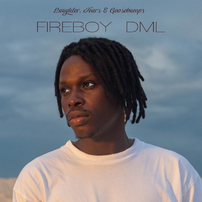 Need You Fireboy DML Mp3 Download