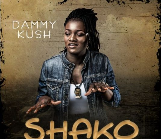 Dammy Kush – Shako (Prod. Timi Jay) Mp3 Download