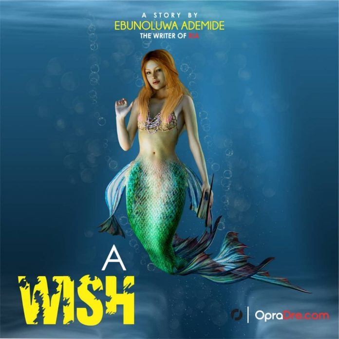 SYNOPSIS OF A WISH by Ebunoluwa Ademide
