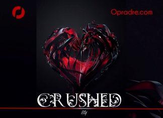 CRUSHED Episode 1 by Lizzy Oyebola Oyekunle