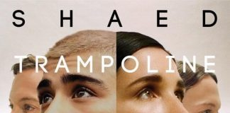SHAED & ZAYN – Trampoline Mp3 Download + Lyrics
