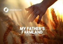 MY FATHERS FARMLAND Episode 1 - 6 by Opeyemi Ojerinde Akintunde